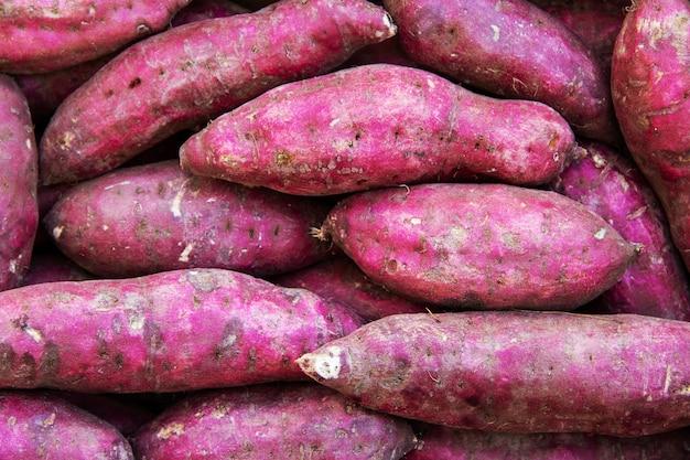 Stapel japanse zoete aardappel of naruto kintoki.