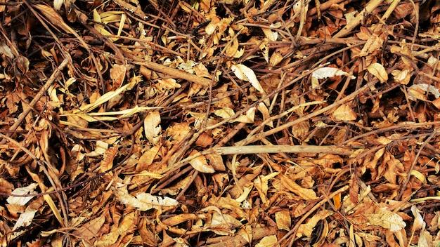 Stapel van bruine droge bladeren