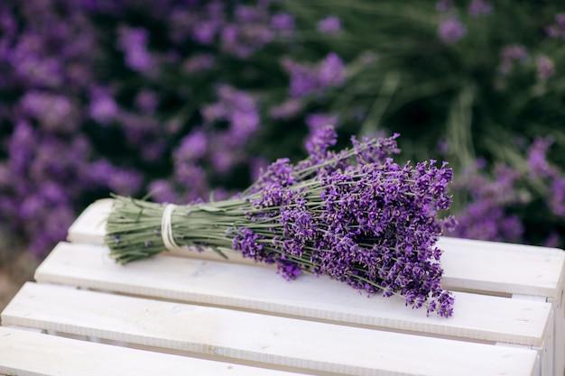 Stapel van lavendel bloemboeketten op een houten oude bank in een zomertuin.