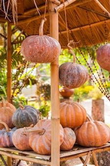 Stapel van verse pompoen