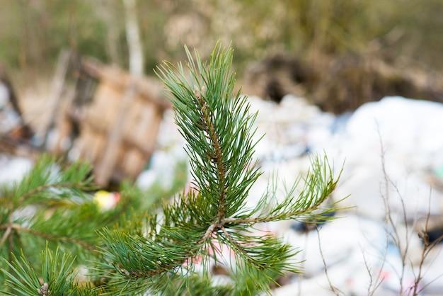 Stapel vuilnisbelt in het bos, natuur milieuproblemen. wereldwijde vervuiling van de aarde.