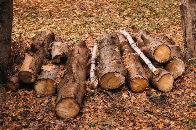 Stapels brandhout in het bos stapel brandhout