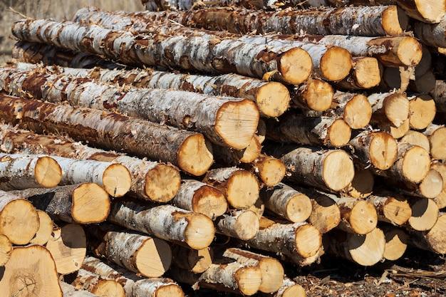 Stapels houtblokken liggen buiten. hout magazijn. hoge kwaliteit foto