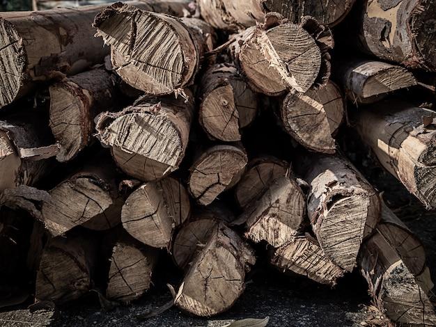 Stapels van de boomstammenachtergrond van de boombesnoeiing.
