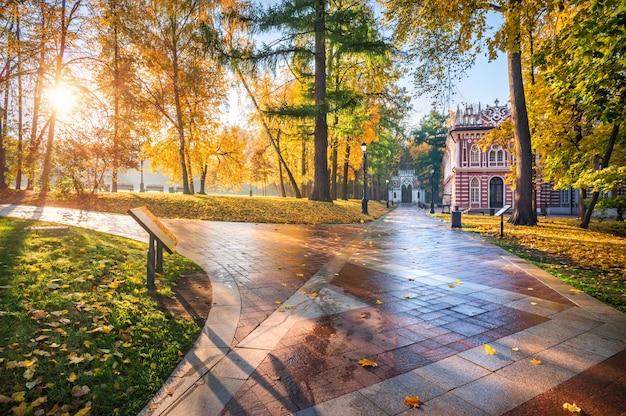 Steegje in tsaritsyno-park in moskou en gouden herfstbomen in de ochtendzon
