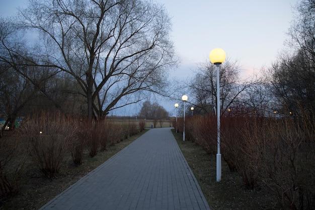 Steegje met lantaarns in het park
