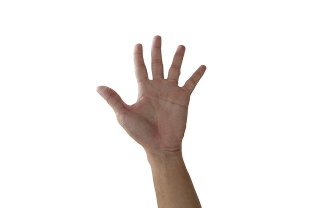 Steek uw hand op met vijf vingers geïsoleerd op een witte achtergrond