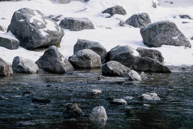 Steen op ijs. winter landschap. koud water in het meer