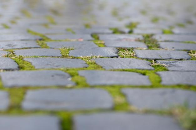Steen oude straatstenen met mos, zachte nadruk