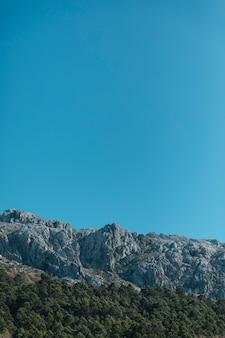 Steenachtige berg en bomen met kopie-ruimte