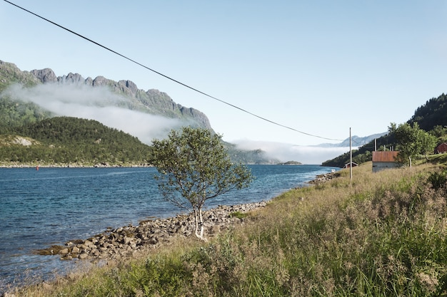 Steenachtige kust van de blauwe baai tegen de achtergrond van de bergen in de mist, lofoten, noorwegen
