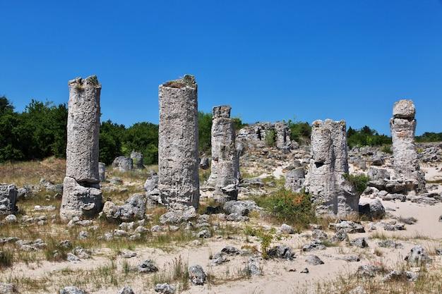 Steenbos, pobiti kamani in varan, bulgarije