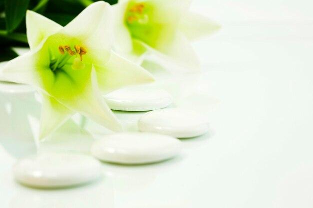Steentjes en bloemen (spa-concept)