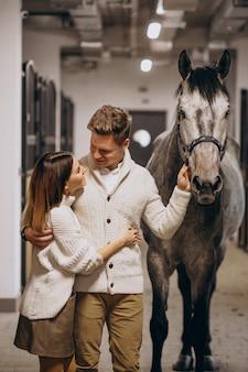 Stel in stal met paard