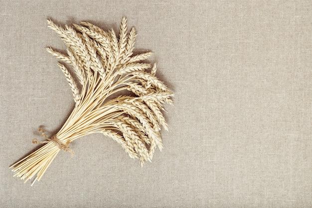 Stelletje gecomprimeerde stengels met oren gouden tarwe op stof achtergrond rijke oogst concept