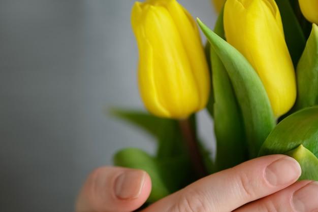 Stelletje gele tulpen in de hand van de vrouw close-up