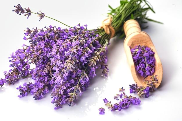 Stelletje lavendel bloemen geïsoleerd