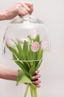 Stelletje tedere roze tulpen onder glazen pot, close-up en vrije ruimte. milieubescherming en concept voor het bewaren van zeldzame bloemen flowers