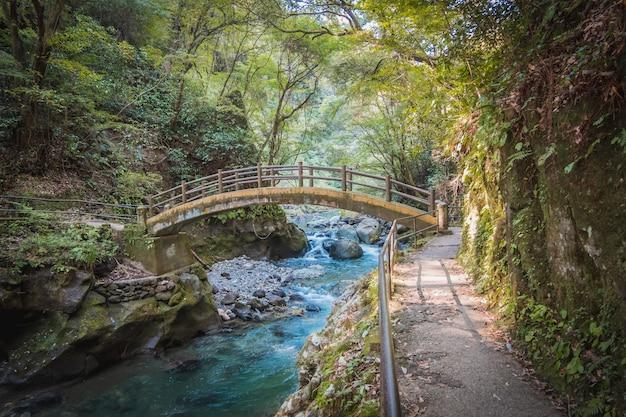 Stenen brug over de rivier in het bos bij amanoyasugawara-schrijn, takachiho, miyasaki, kyushu, japan