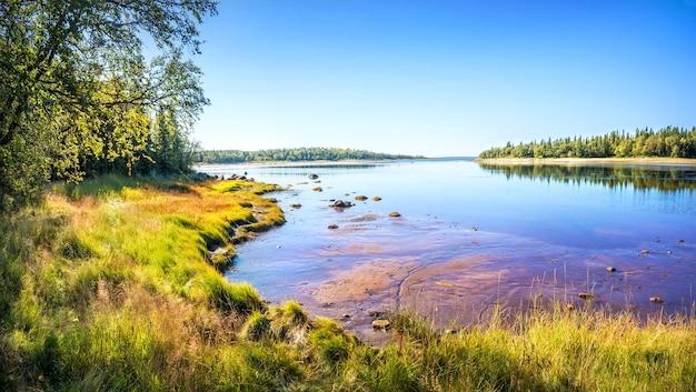 Stenen en gras aan de oevers van de witte zee op de solovetsky-eilanden
