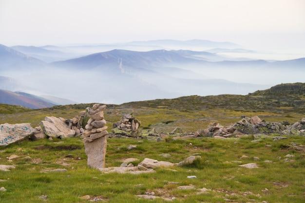 Stenen in gras in bergen
