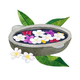 Stenen kom voor de wassing met bloemen. kom voor spa met frangipani of plumeria en groene tropische bladeren. hand getekend aquarel illustratie. geïsoleerd.