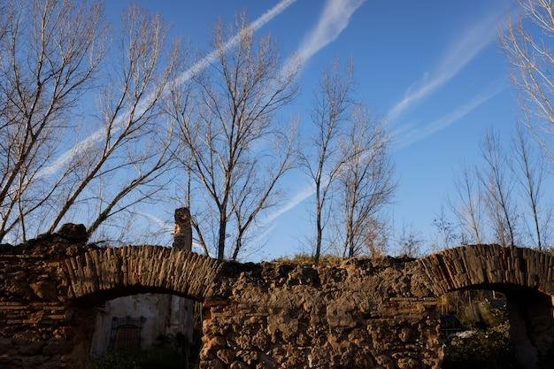 Stenen muur met oude boog in een verlaten gebouw in een bos bij zonsondergang.