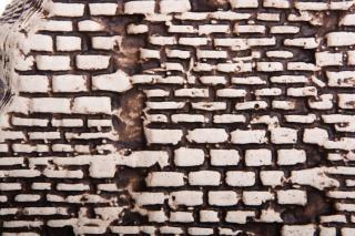 Stenen muur vlek