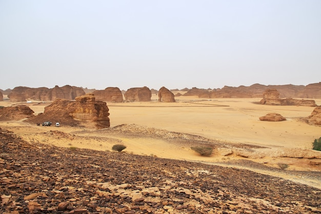 Stenen olifant in de woestijn dichtbij al ula, saoedi-arabië
