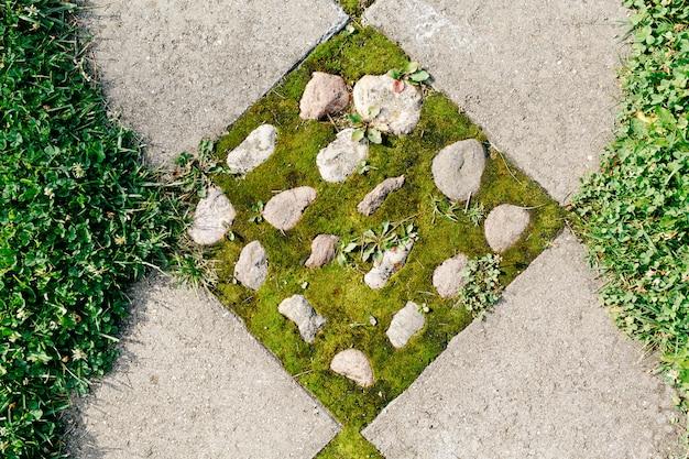Stenen pad met gekiemd mos