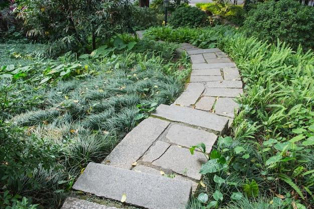 Stenen pad met gras opgroeien