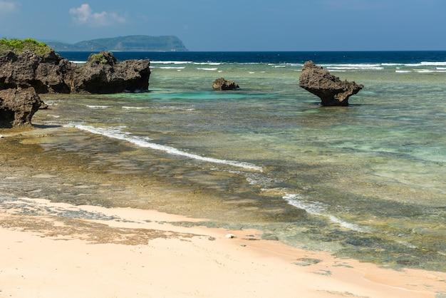 Stenen platform verschijnen op eb smaragdgroene zee. rotsformatie typisch voor de kuststreek.