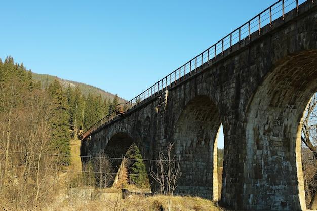 Stenen spoorbrug in prachtige bergen met sparren
