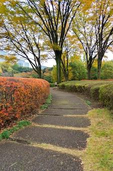 Stenen trap in een japanse tuin