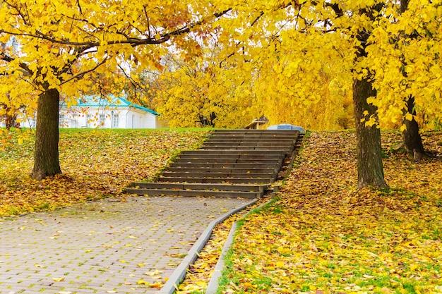 Stenen trap in het park bezaaid met gele herfstbladeren. herfst landschap