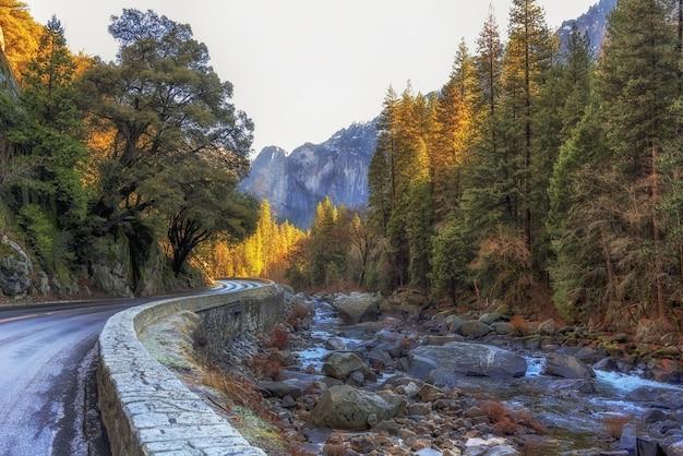 Stenige rivierbedding naast een weg omgeven door bomen in het yosemite national park