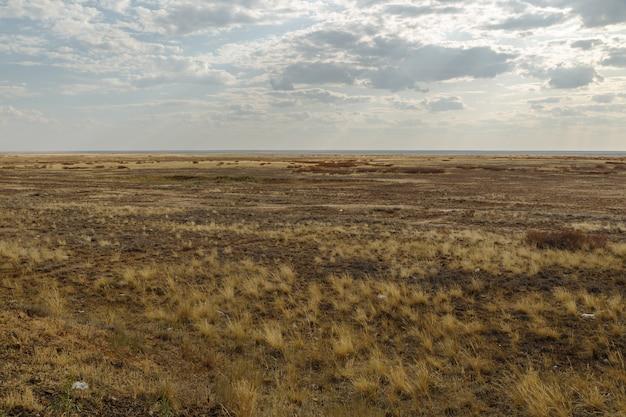 Steppe in kazachstan, droog gras in een lege steppe, bewolkte hemel
