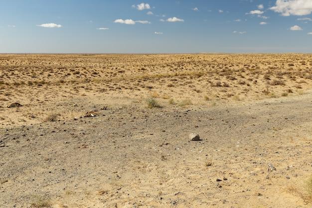 Steppe in kazachstan, verlaten mooi landschap, droog gras in de steppe