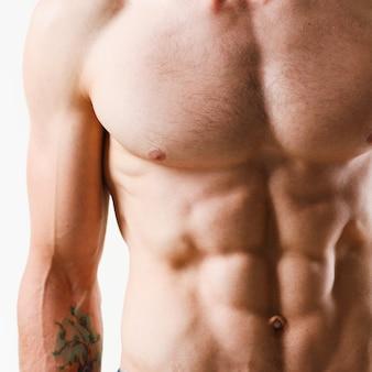Sterke herenpers dankzij dieet