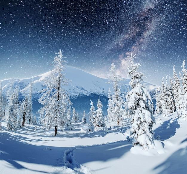 Sterrenhemel in besneeuwde winternacht. fantastische melkweg