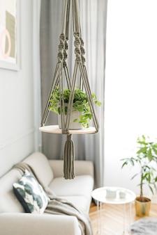 Stijlvol en minimalistisch boho-interieur van woonkamer met houten plank, grijze bank, design en elegante accessoires, handgemaakte macrame plankplanterhanger. plantkunde en woondecoratie met veel planten.