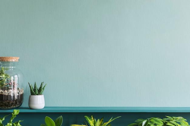 Stijlvol woonkamerinterieur met prachtige planten in verschillende hipster- en designpotten op de groene plank. groene muur. modern en bloemenconcept van de jungle van de huistuin. sjabloon.
