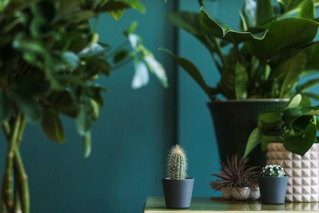 Stijlvolle bloemencompositie met prachtige planten, cactussen en vetplanten in design en hipster potten op de marmeren salontafel. natuurlijke woonkamer. groene muren. huis tuinieren concept. sjabloon.
