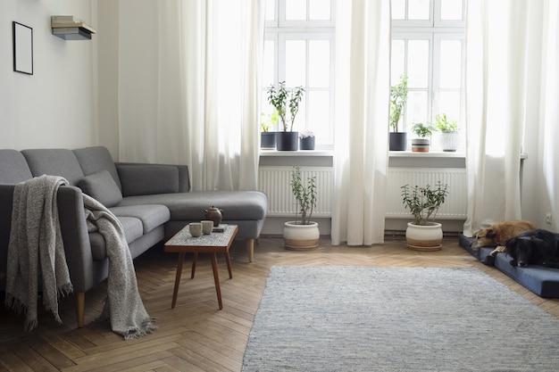 Stijlvolle compositie van creatief ruim woonkamerinterieur met bank, salontafel, planten, tapijt, hond en accessoires. witte muren en parketvloer.