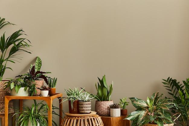 Stijlvolle compositie van huistuininterieur gevuld met veel mooie planten, cactussen, vetplanten, luchtplant in verschillende designpotten. home tuinieren concept home jungle.