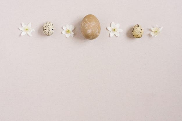 Stijlvolle pasen plat lag. kwarteleitjes op een beige achtergrond met lente witte bloemen. gelukkig pasen wenskaart. ruimte kopiëren
