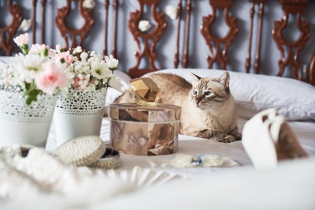 Stijlvolle witte bruiloft bruids schoenen, parfum, bloemen, sieraden en kat op een bed.