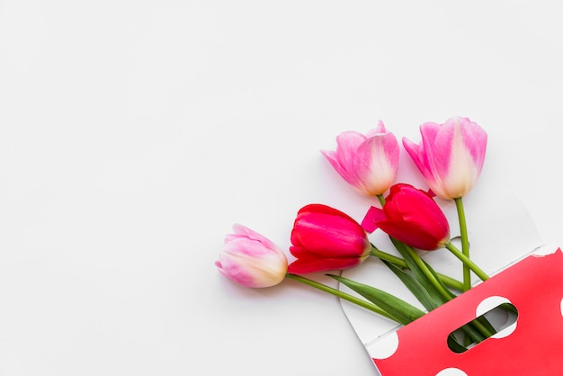 Stilleven met bloem in envelop op witte achtergrond