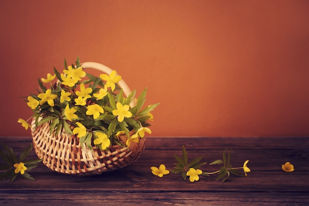 Stilleven met gele lentebloemen in mand