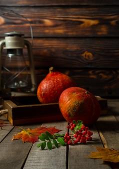 Stilleven met kleine herfstpompoenen en tak van lijsterbessenbessen
